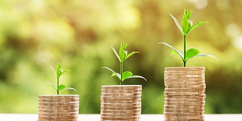 Investors in Svasti